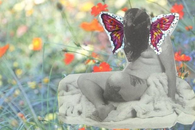 In_a_world_full_of_butterflies